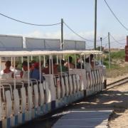 Train on the beach